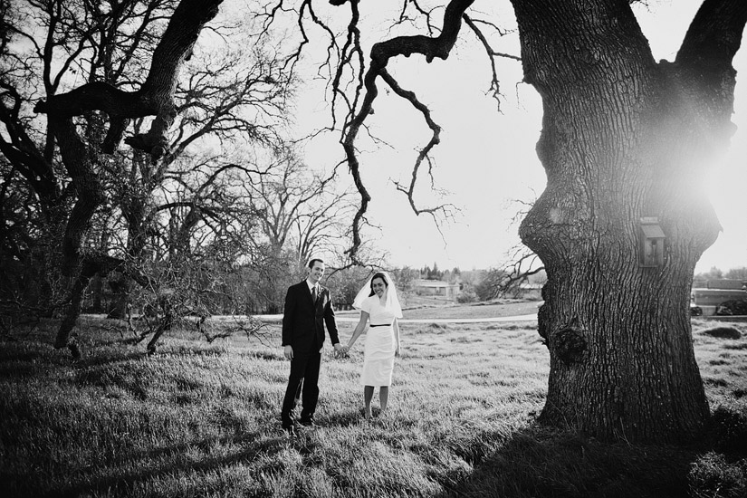 Maidu Indian Museum Roseville wedding  photos of Ryanne & Nate under a oak tree