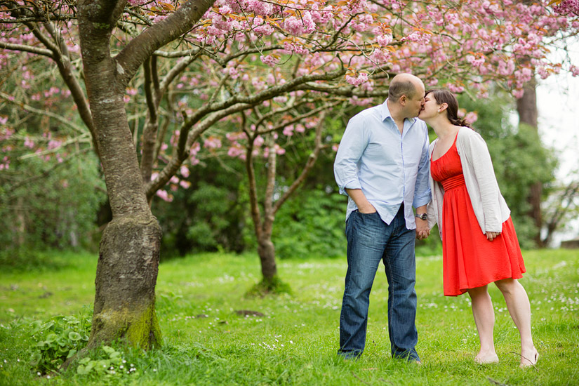 golden gate park engagement photography, abby and craig by cherry blossoms