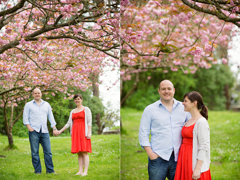 golden gate park engagement photo, abby and craig by cherry blossoms