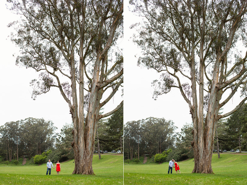 golden gate park engagement photo of abby and craig by a big tree