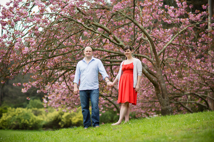 golden gate park engagement photos of abby and craig holding hands