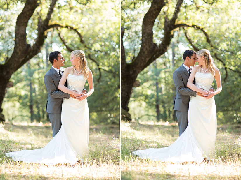 rita & adam's placerville wedding photos in the forest