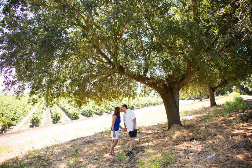 bogle winery engagement photography