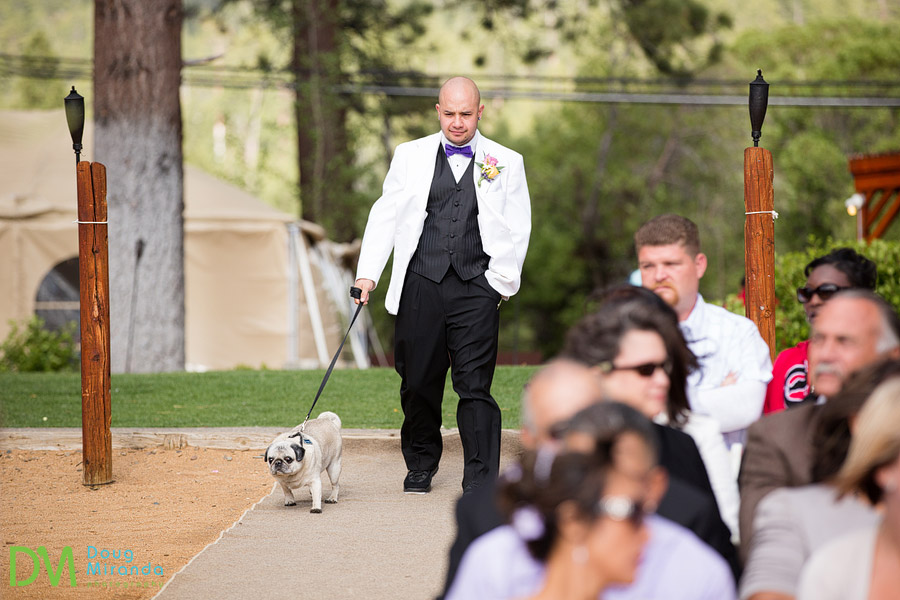 james walking down the aisle with his pug dog at his wedding ceremony