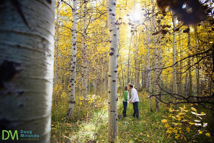 lake tahoe fall engagement photos in aspen trees