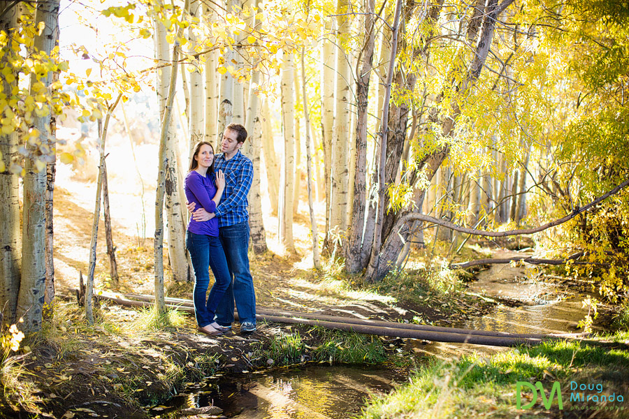 a couple standing near a creek and aspen trees