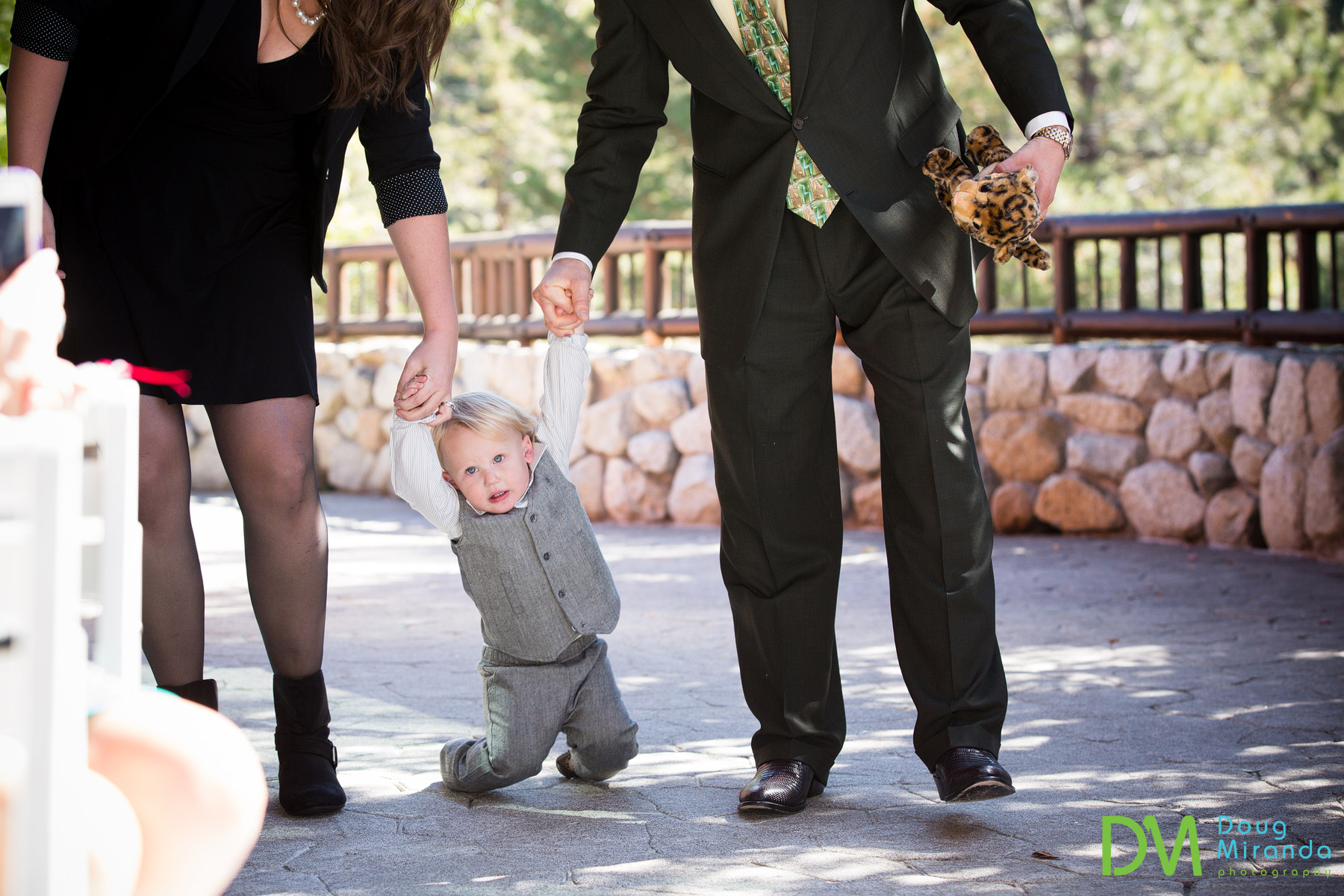 ring bearer photos