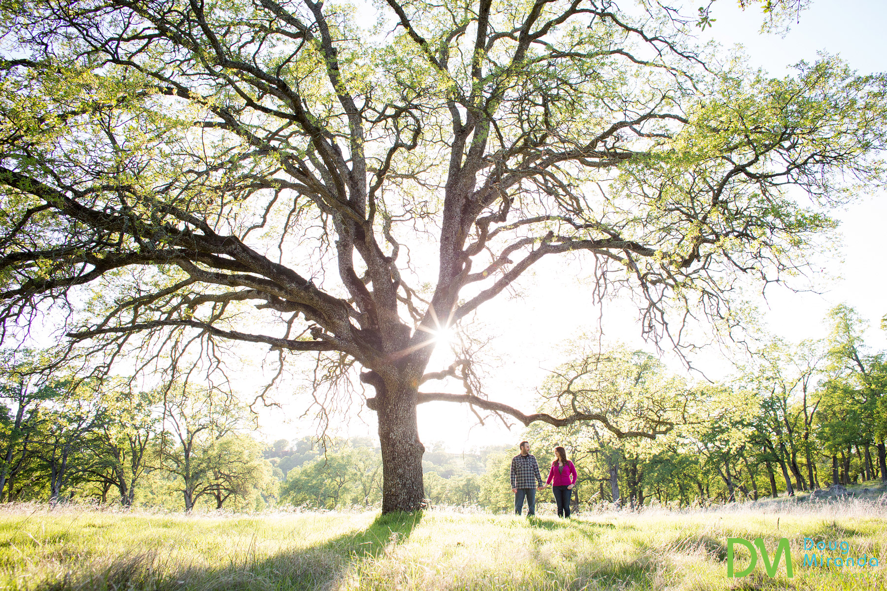 el dorado hills engagement photography