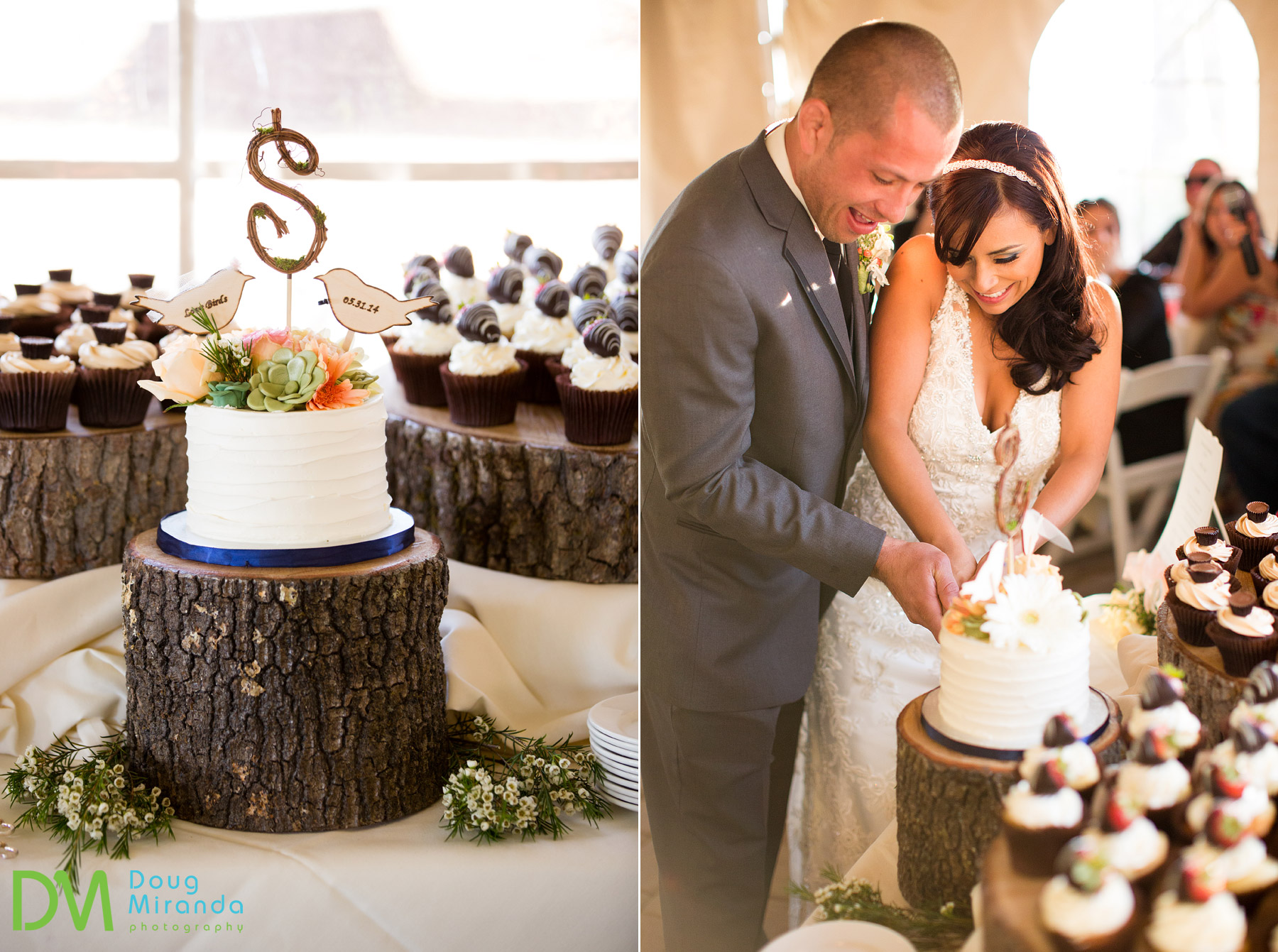 Lake tahoe wedding cake photos