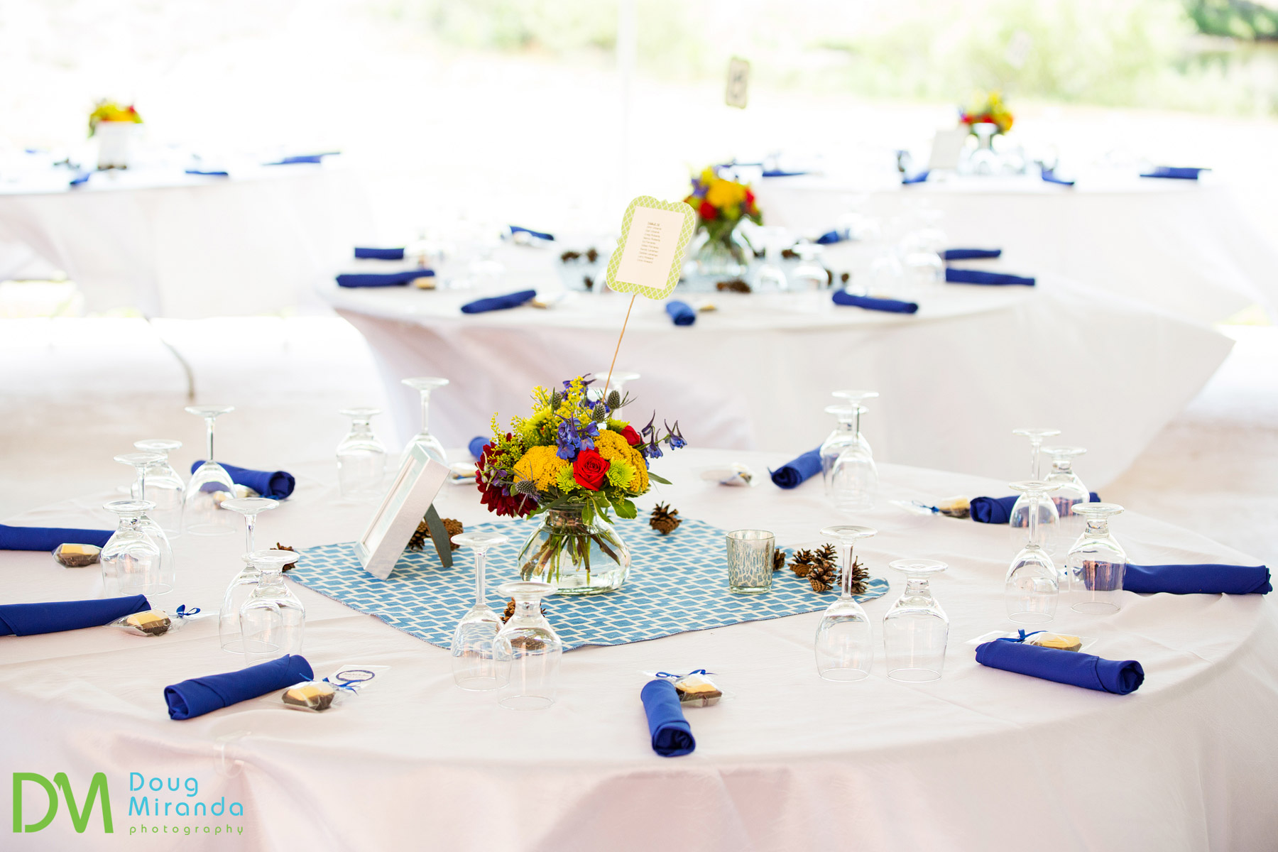 tahoe paradise park wedding reception