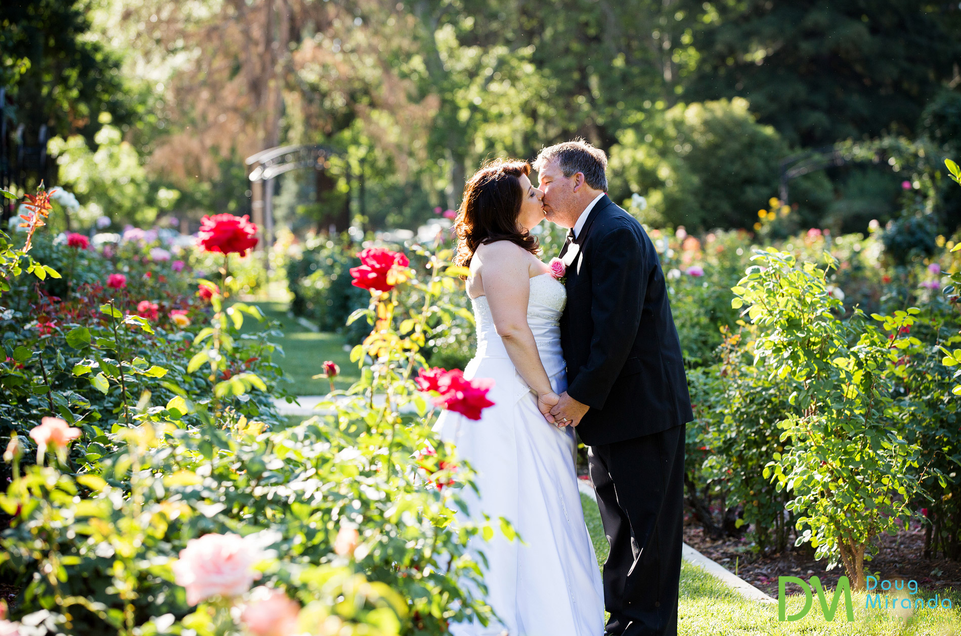 wedding at mckinley park rose garden