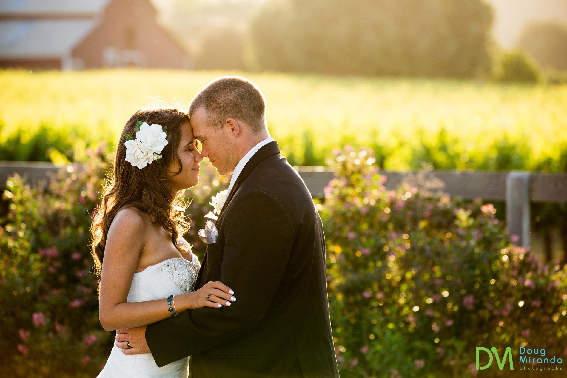 geyserville ca wedding