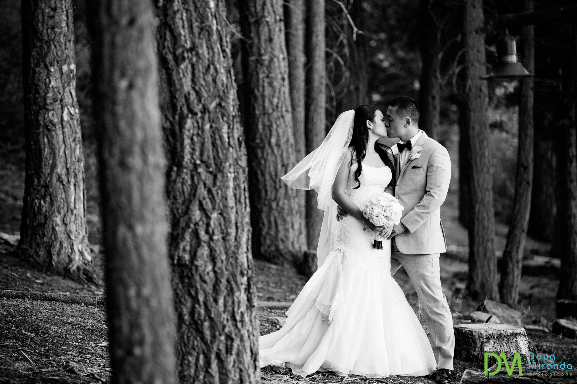 northstar resort wedding photographers